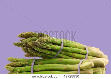 fresh green asparagus shoots in bundles on a purple background