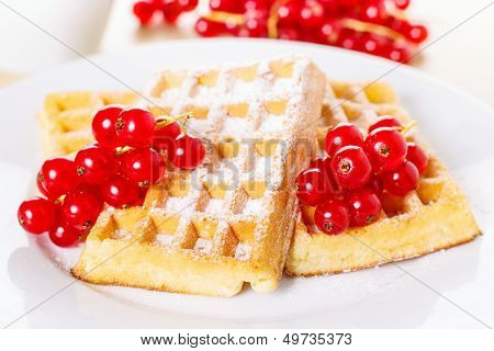 Waffles With Currants