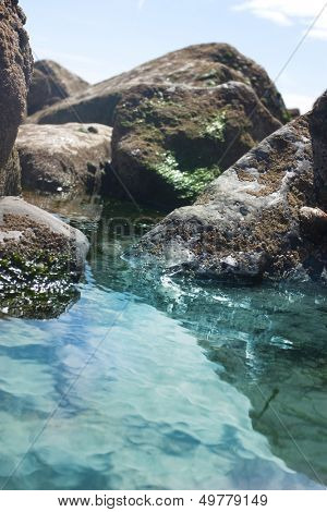 rock pool with barnacles on rocks
