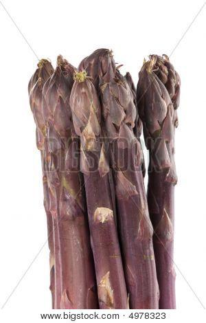 Purple Asparagus Spears Vertical