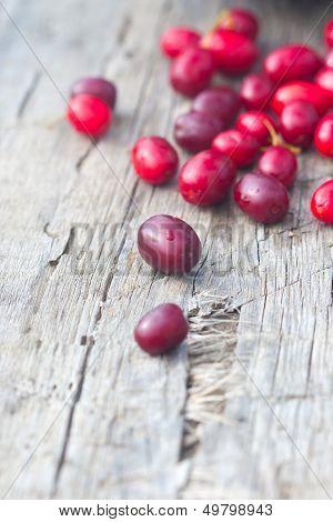 Scattered Rich Cornelian Cherries