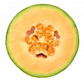 Honeydew Melon Cross Section