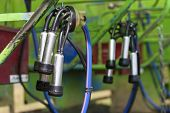 picture of breast-pump  - mechanical milker in agriculture industry in morning light - JPG