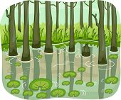 stock photo of swamps  - Illustration of a Swamp with Lotus Leaves Floating Around - JPG