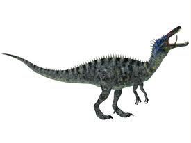 foto of crocodilian  - Suchomimus was a large Spinosaurid dinosaur with a crocodilian - JPG