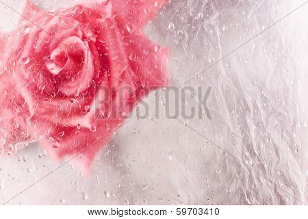 Abstract rose in ice with frozen bubbles