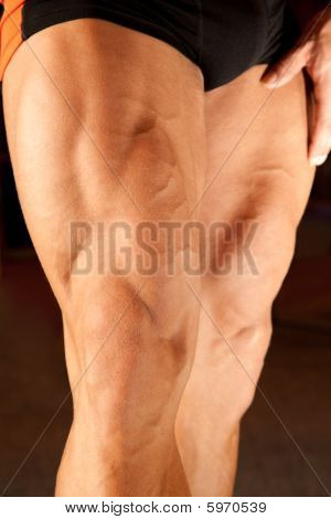 Closeup Photo Of Bodybuilder Legs