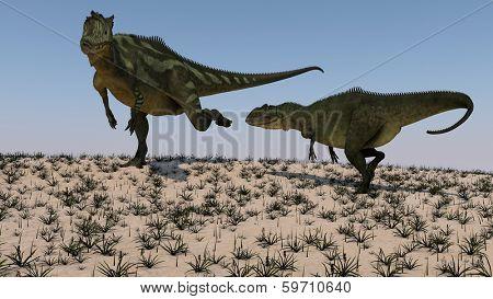 yangchuanosaurus vs yangchusanosaurus