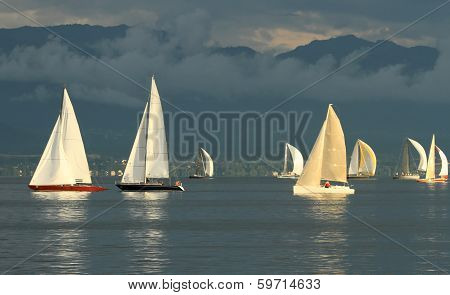 Sailboat race by sunset