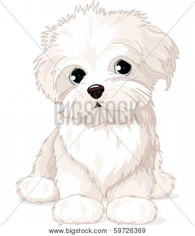 Clipart Maltese Puppy Dog