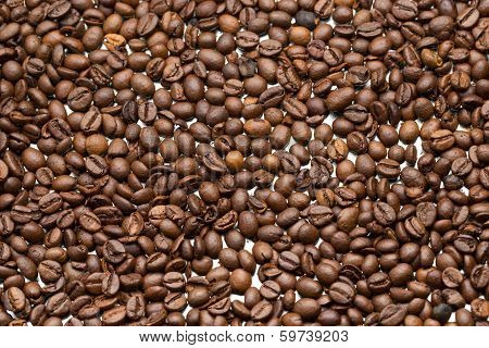 Background Of Delicious Freshly Roasted Coffee Beans.