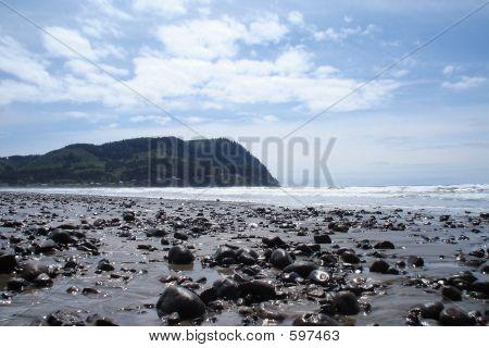 Rocky Blue Ocean