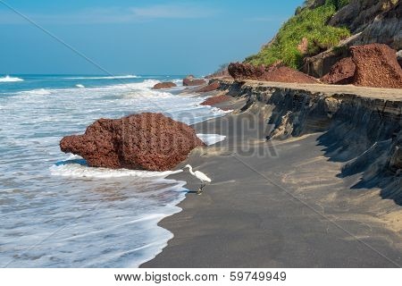 Landscape Of The Coast With A White Bird Of Varkala. India, Kerala