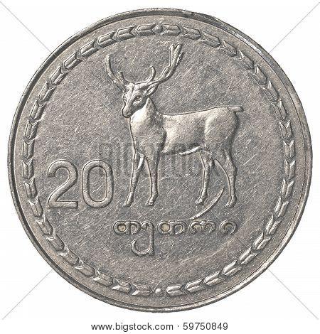 20 Georgian Tetri Coin