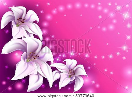 beautiful pink background with white lilies