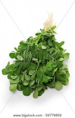 methi, fenugreek leaves