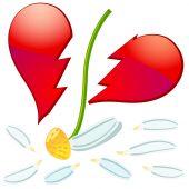stock photo of broken heart flower  - Camomile flower with broken petals and broken shape of heart vector - JPG