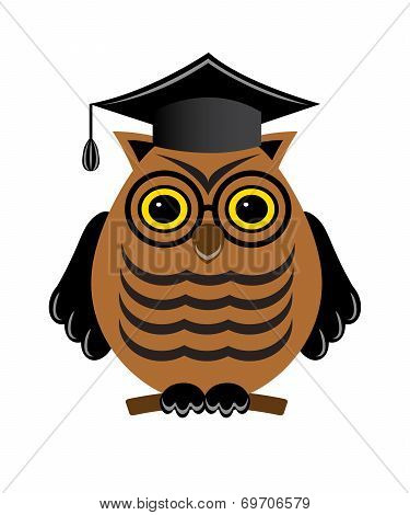 wise owl with glasses and a graduate hat
