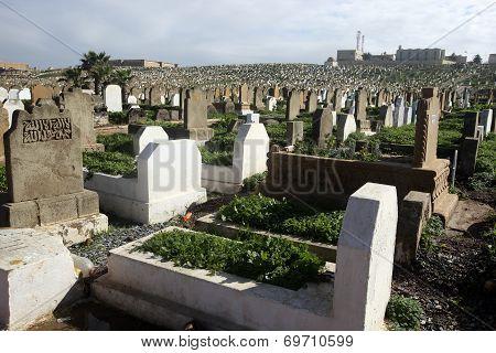 Moroccan Cemetery, Rabat