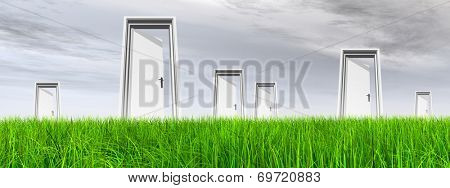 High resolution green, fresh and natural 3d conceptual grass over a gray sky background banner, a opened door at horizon