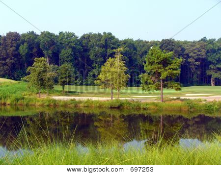 Wetlands As Golf Course.