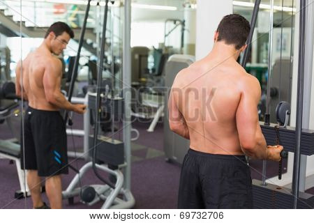 Rear view of a shirtless young muscular man using triceps pull down in gym