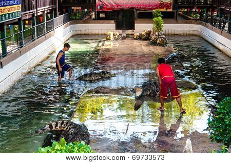 Crocodile show at Samphran Crocodile Farm  in Nakhon Pathom Thailand.
