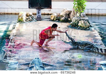 Crocodile Show At Samphran Crocodile Farm, Thailand