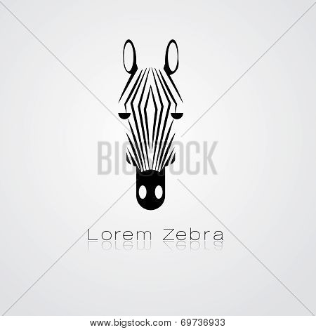 Zebra head on white background