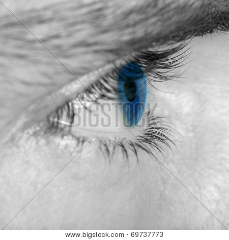 Close Up Detail Of A Mans Blue Eye