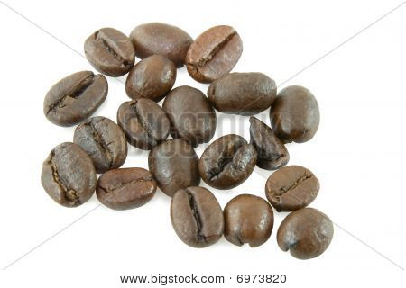 Coffee Grain Over White Background for you