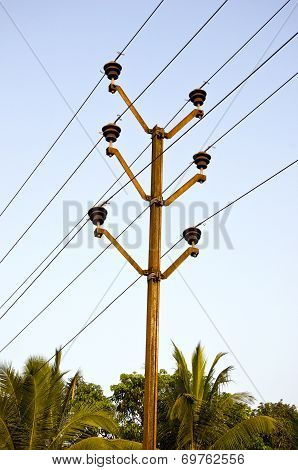 Electric Pole And Palm Tree In Asia