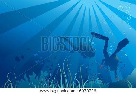 Scuba divers, underwater sea life