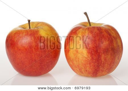 Two Red Apples On White Background With Reflection