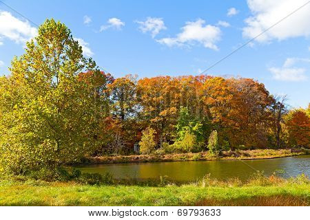 Colorful fall foliage of deciduous trees near the water.