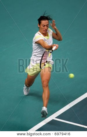 Francesca Schiavone (ita) At Open Gdf Suez 2010