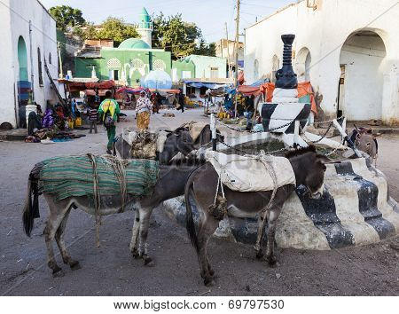 Harar, Ethiopia - December 24, 2013: Donkeys Wait To Be Loaded On Market Square Of Walled City Of Ju