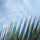 pic of prism  - Palm tree leaf and blue sky through prism filter - JPG