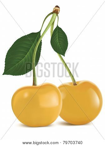 Yellow Cherry With Green Leaf Isolated. Vector Illustration