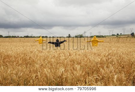 Group Of Scarecrow, Agricultural Equipment