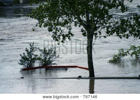Flood 7