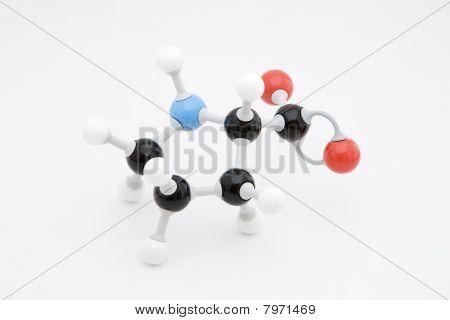 Proline Amino Acid Molecule