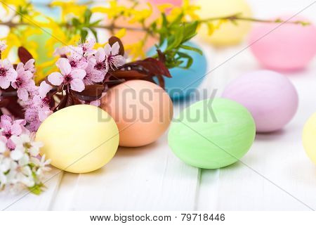 Easter Eggs And Blooming Branch