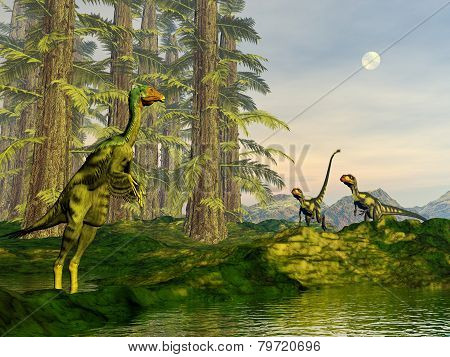 Caudipteryx and dilong dinosaurs - 3D render