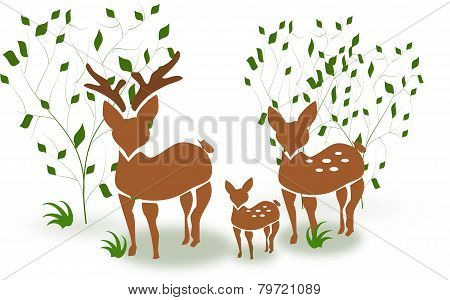 Family Deer Between Trees