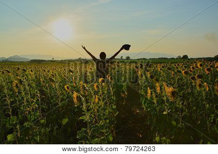 Man With Raised Hands Enjoys With Beauty World In Sunflower Field