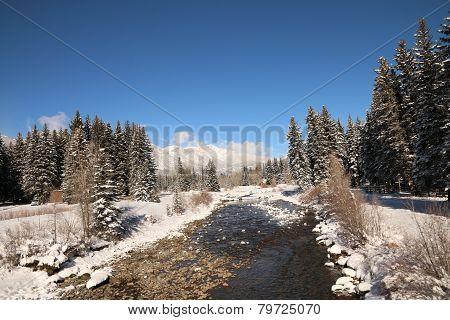 Vallecito Creek