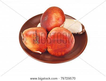 Boletus edulis mushroom in clay plate
