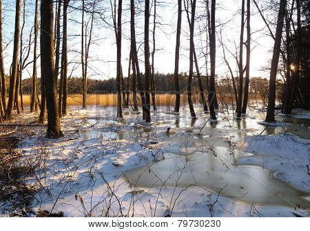 Winter scenery panorama