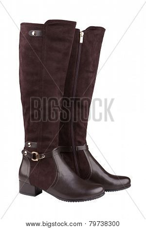 Elegant female knee high boots isolated on white
